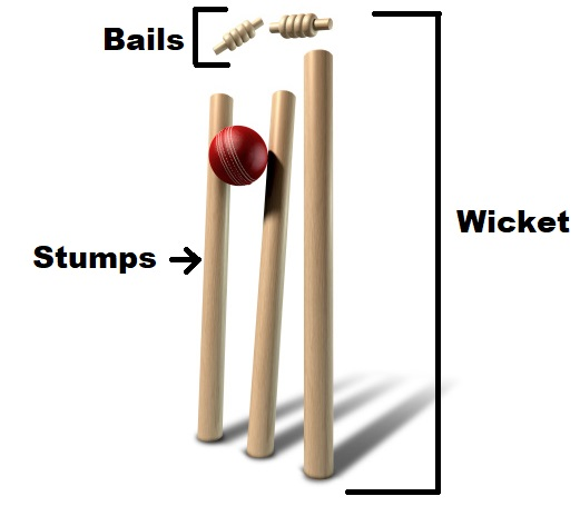 image displaying wicket